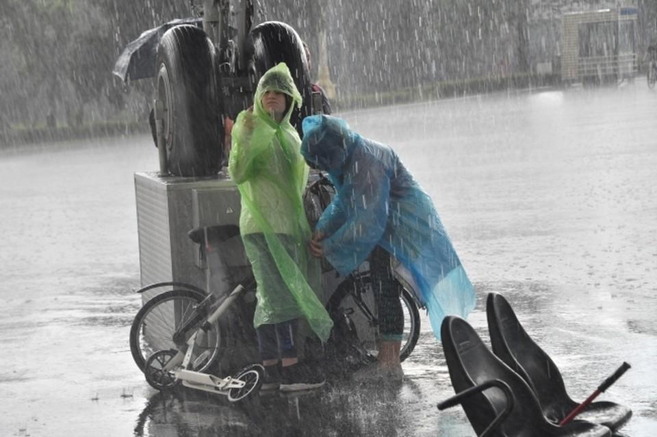 Жителей Москвы предупредили о грозе и ливне