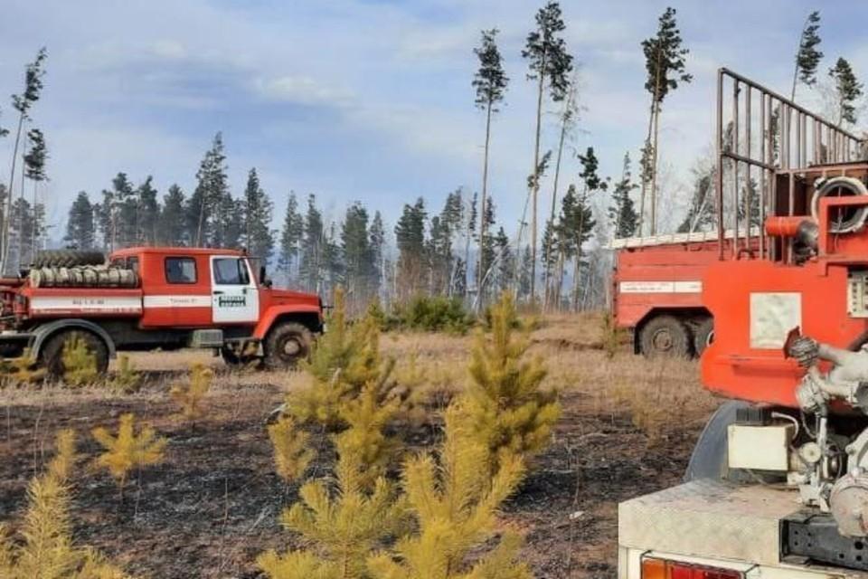Три лесных пожара потушили за сутки в Иркутской области