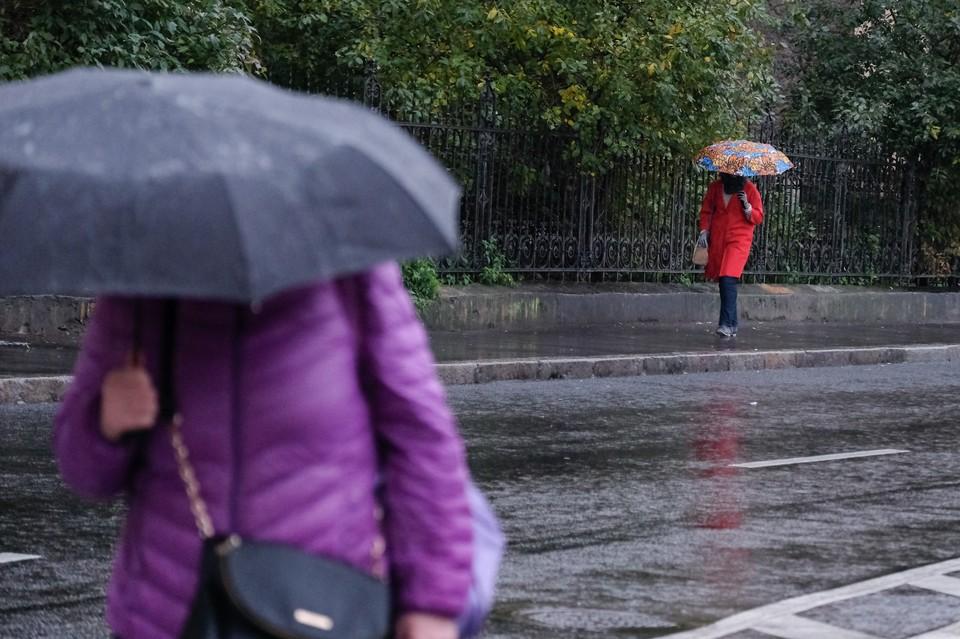 В Кузбасс придут дожди с грозами.