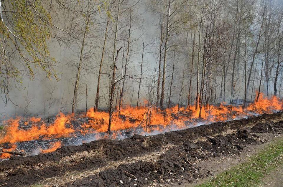 В Тюменской области до лета продлили особый противопожарный режим.