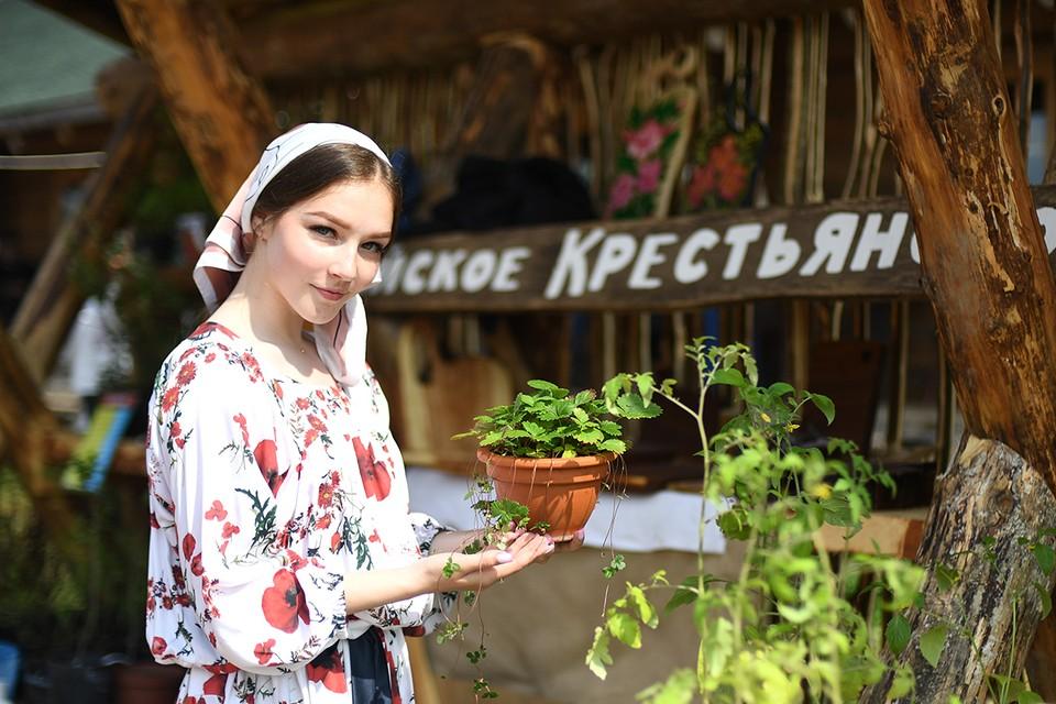 14 и 15 мая в очередной раз гуляла ярмарка «новых русских крестьян».