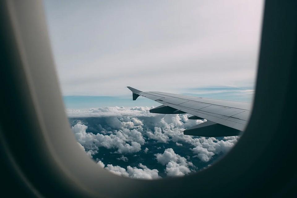 Руководитель ирландской авиакомпании Ryanair Майкл О'Лири заявил, что, по его мнению, на перенаправленном в Минск самолете компании находились сотрудники белорусского КГБ. Фото: pixabay