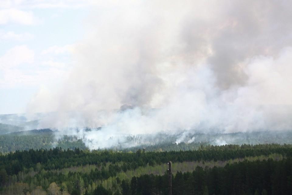 Крупный лесной пожар тушат в 5 км от поселка Мамакан в Иркутской области