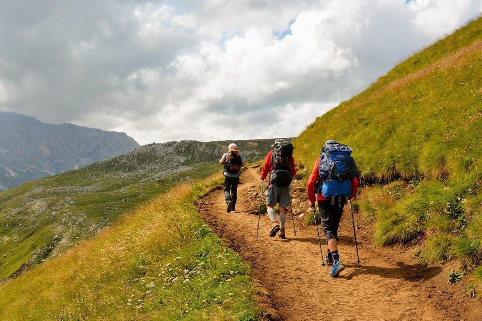 Поиски туристов в горах Туркестанской области продолжаются