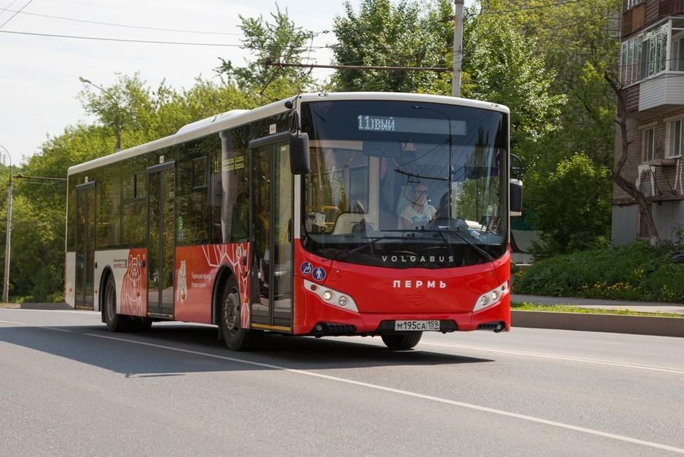 Автобусные маршруты вновь изменят