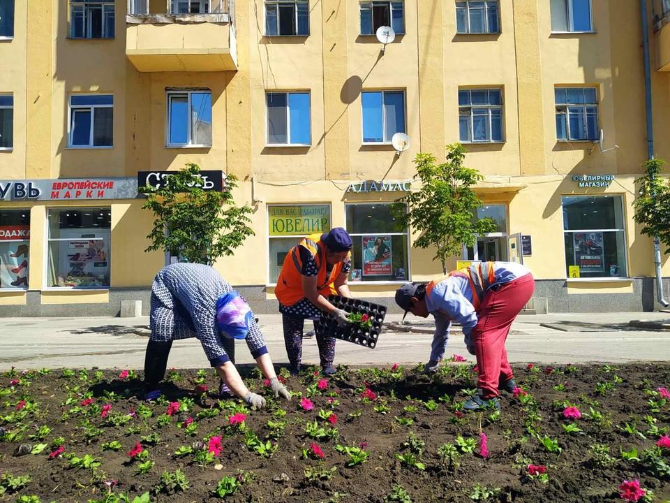 На территории работают более десятка специалистов Фото: Администрация Самары
