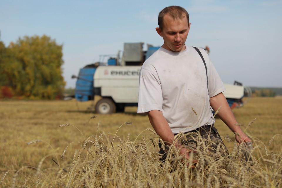 Государствам Африки предложат сибирскую сельхозпродукцию.