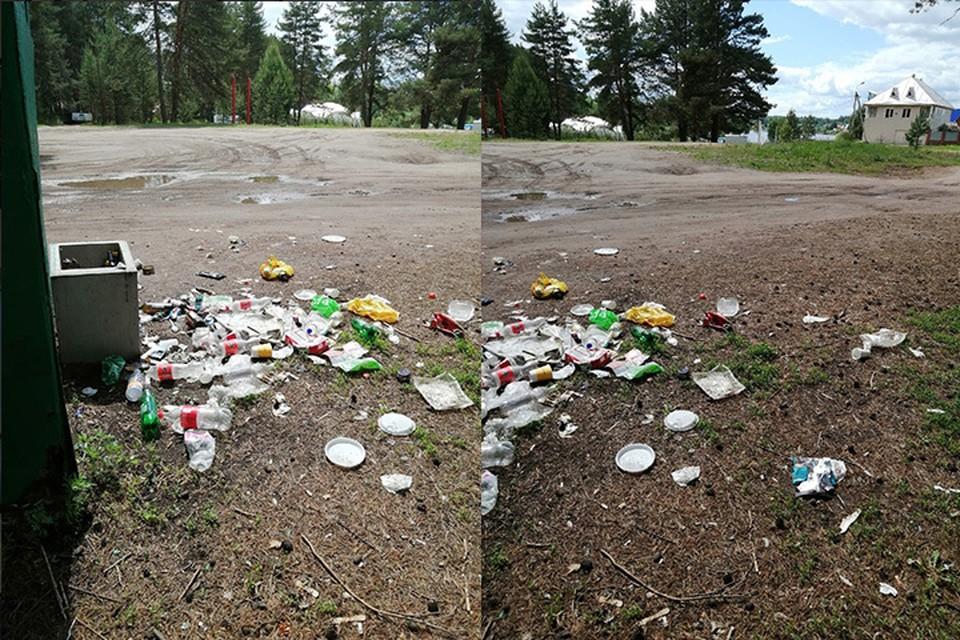 Возможно, мусор растащили собаки Фото: vk.com/typical_izhev
