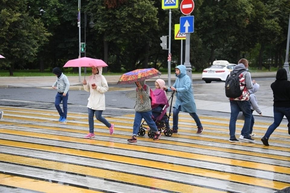 В Ростове в ближайшие часы прогнозируют сильный дождь