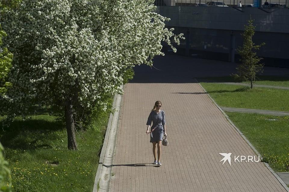 В Екатеринбурге и Свердловской области сохраняются ограничительные меры