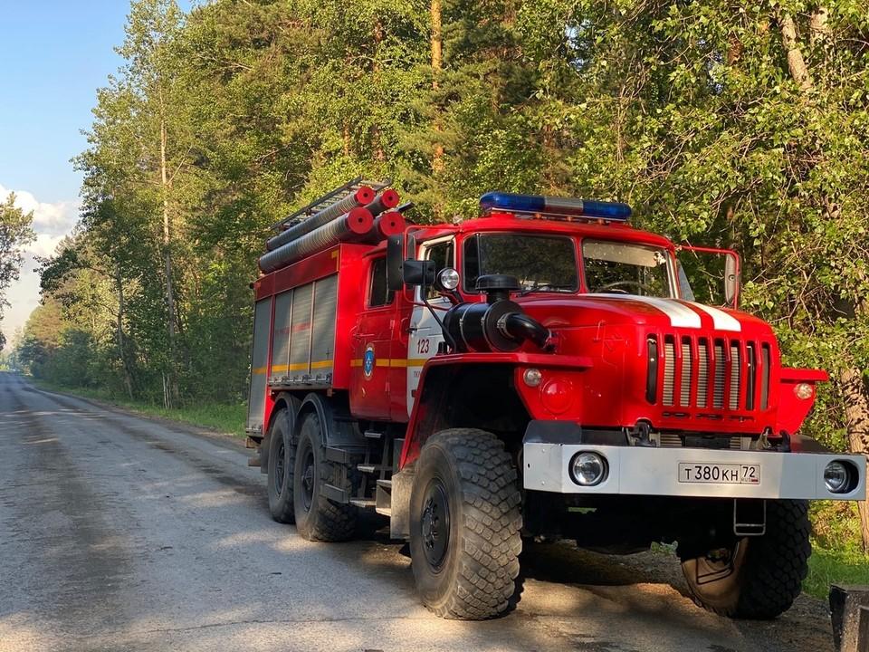 За сутки в Тюменской области возникло 15 лесных пожаров на площади 323 гектара.