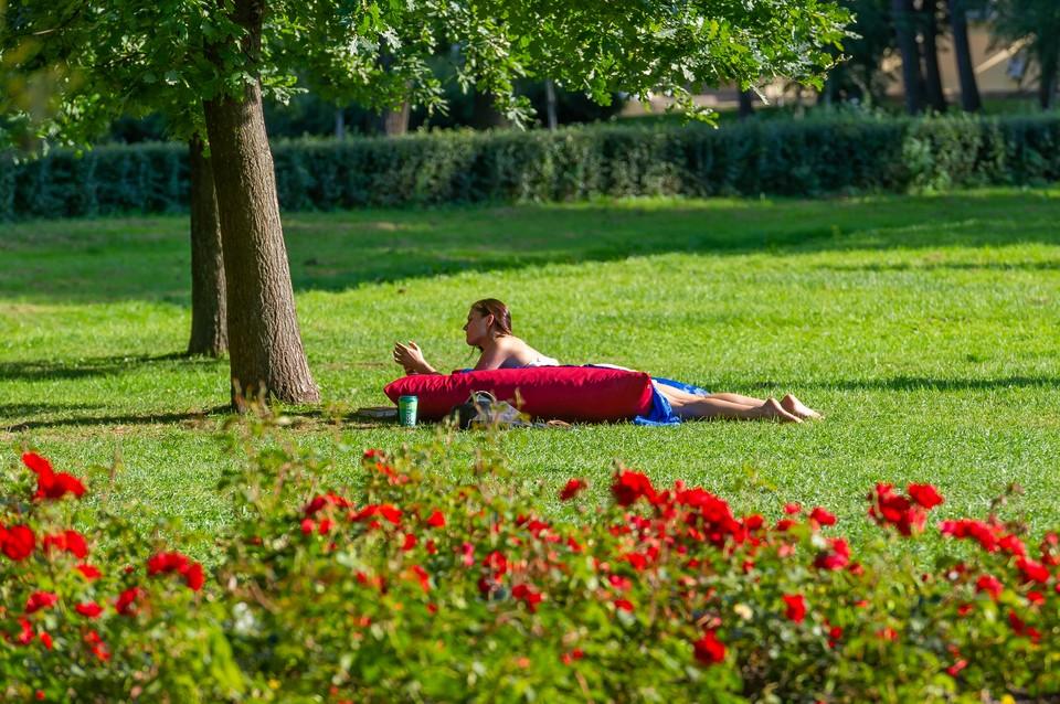 1 июня в Петербурге будет тепло и солнечно.