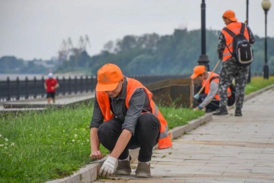Подростки Ярославля могут найти себе работу на лето. ФОТО: Управление по молодежной политике