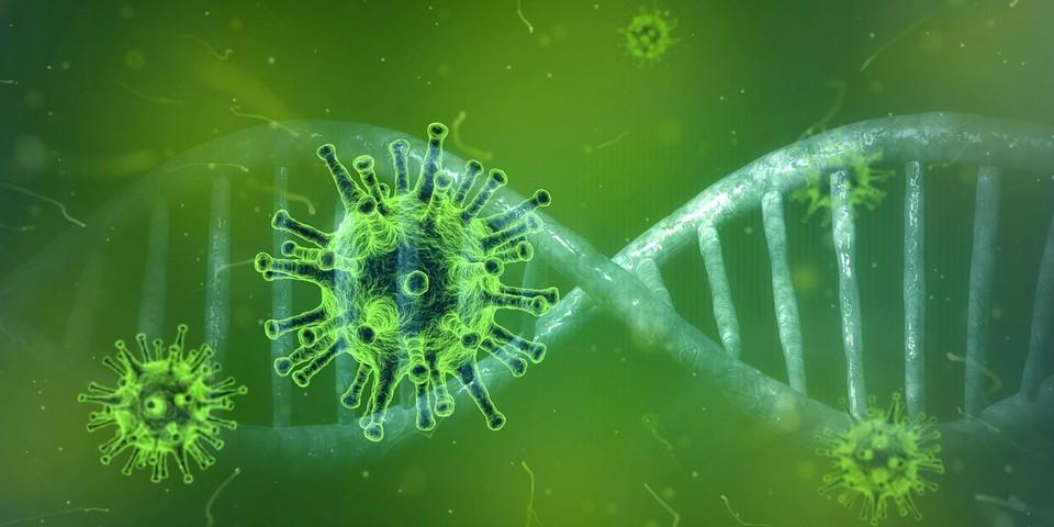Число заболевших коронавирусом в Югре на 2 июня 2021 года увеличилось на 46 человек Фото: pixabay.com