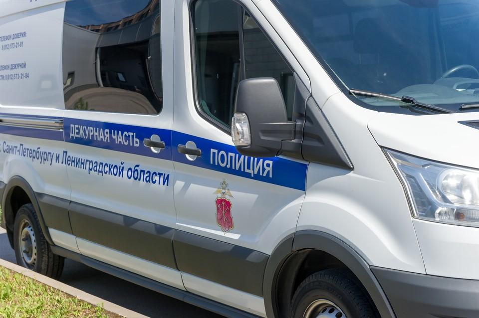 Полиция поймала жителя Купчино, изнасиловавшего немецкого студента.