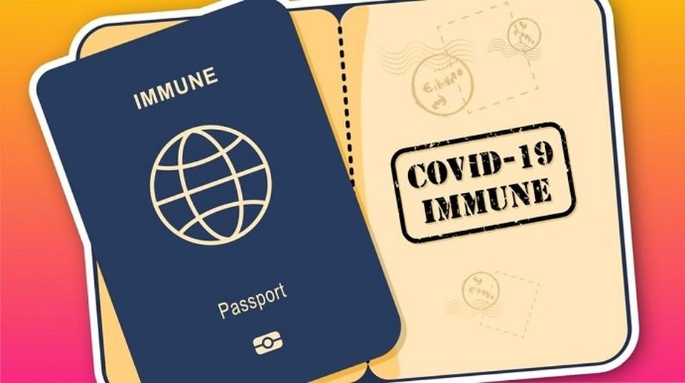 Паспорта вакцинации могут быть разными (Фото: pravda.com.ua).