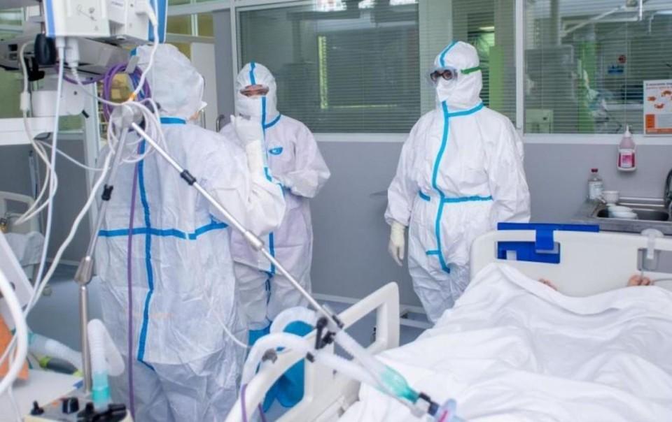 Скоро пандемии конец! Фото: соцсети