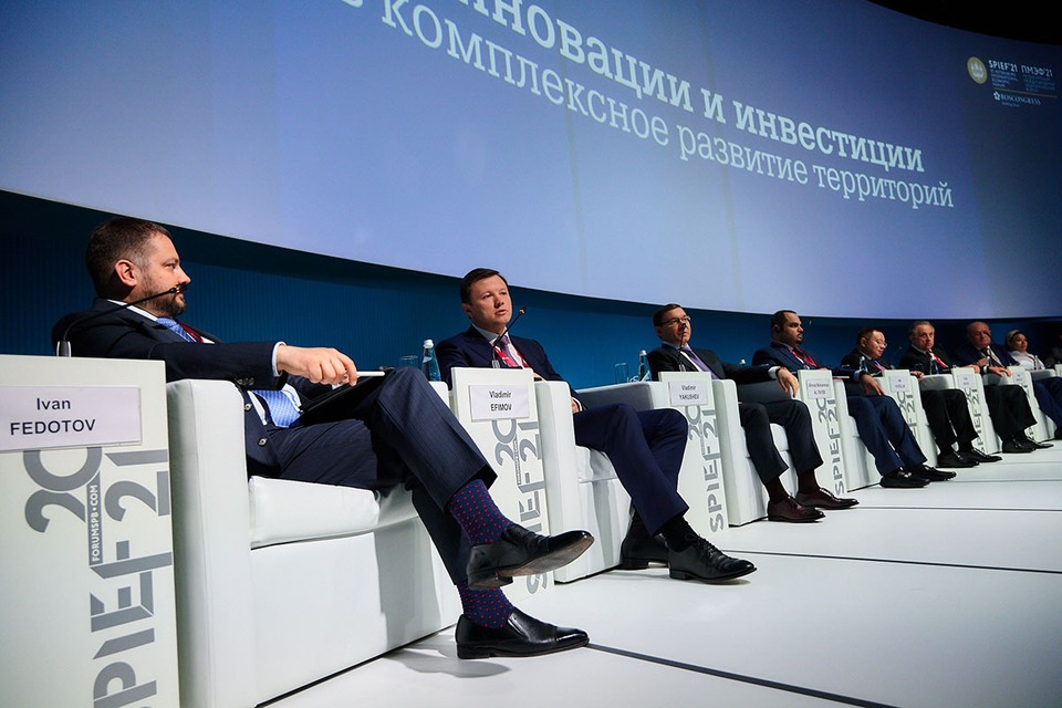Заммэра Владимир Ефимов рассказал о будущем этих территорий