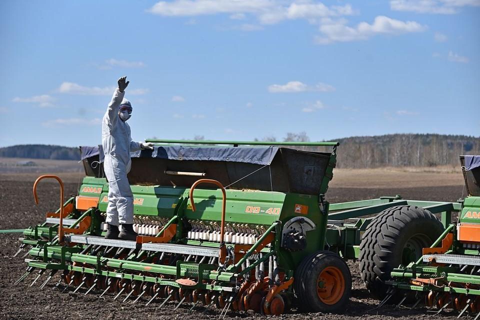 К 24 мая томские аграрии успели засеять больше 60 процентов яровых полей.