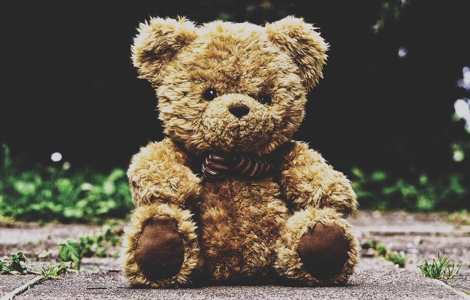 Парень похитил плюшевых медвежат и раздал знакомым девушкам Фото: pixabay.com