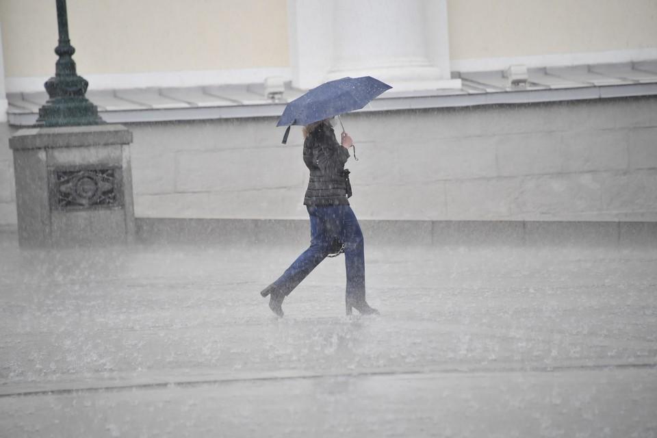 В воскресенье на Белгородчине ночью небольшие дожди. Днем кратковременные дожди и грозы.