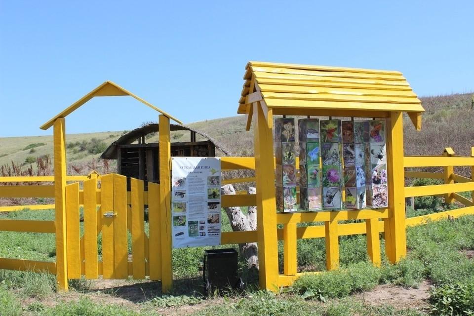 Гостиница для насекомых появилась в заповедном урочище. Фото: Жидков В.Ю./Природный Парк «Тарханкутский»/VK