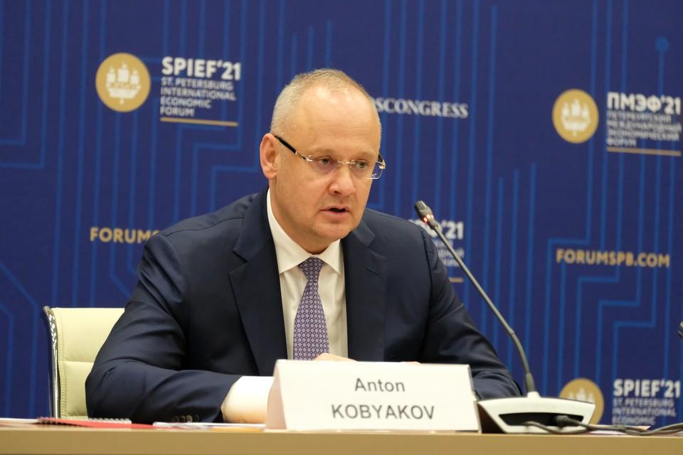 Советник президента РФ, ответственный секретарь оргкомитета ПМЭФ Антон Кобяков.