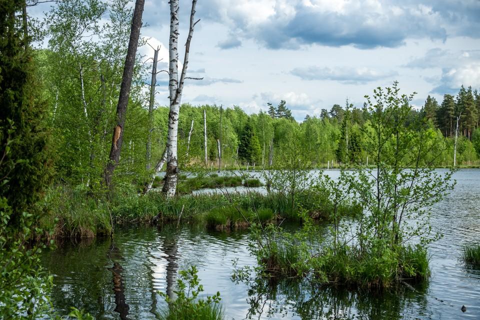 В Кузбассе нашли тело 66-летнего мужчины в озере.