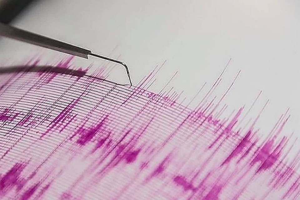 Землетрясение произошло в 9:50 утра по местному времени. Фото: Нина Петрищева