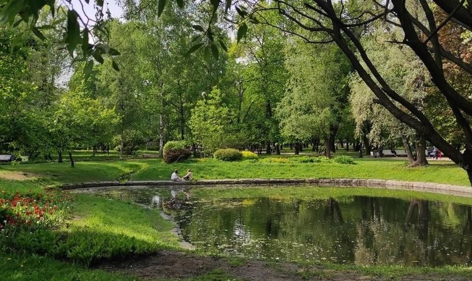 Тюменцам разрешили отдыхать на природе.