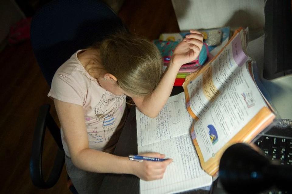 В чем причина поступков, на которые порой решаются школьники из-за неудачи на экзамене