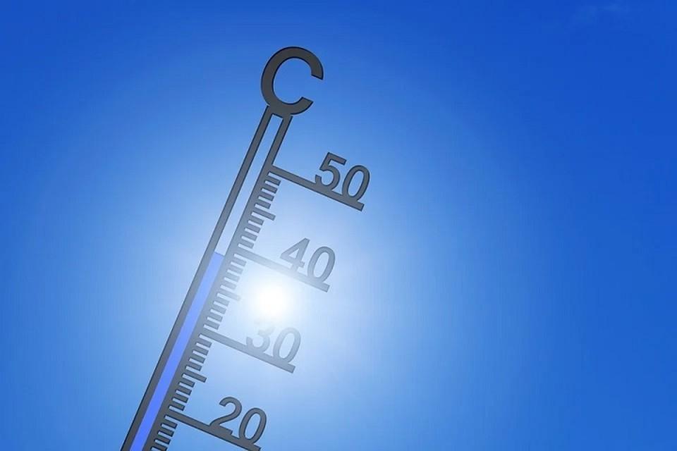 В июне в Беларуси синоптики зафиксировали более +37 жары. Фото: pixabay.com