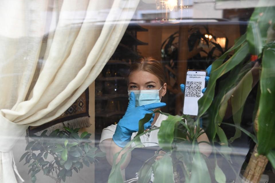 В Волгограде вводится система QR-кодов для посещения кафе, ресторанов, кинотеатров, концертов, музеев