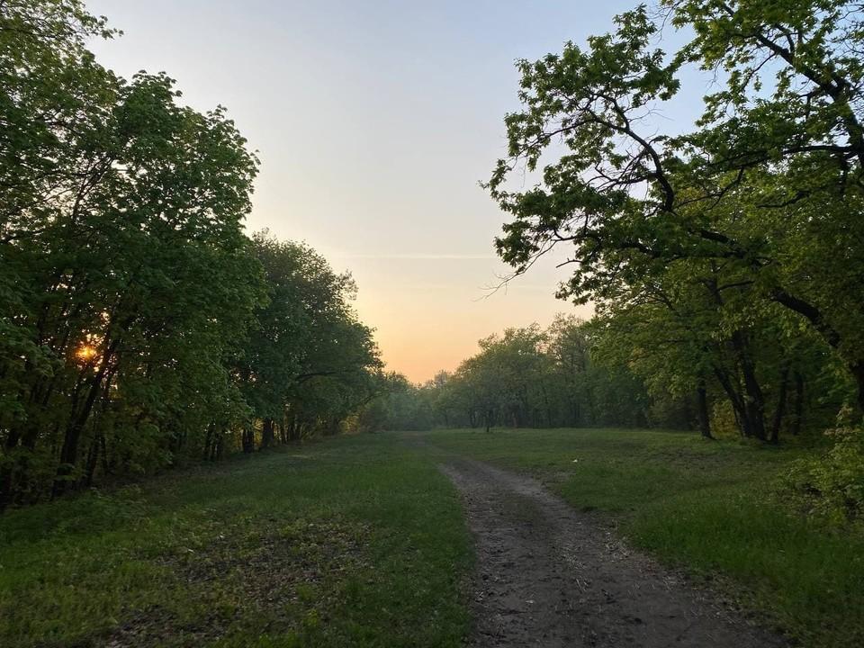 Саратовцам можно гулять на «Кумыске»