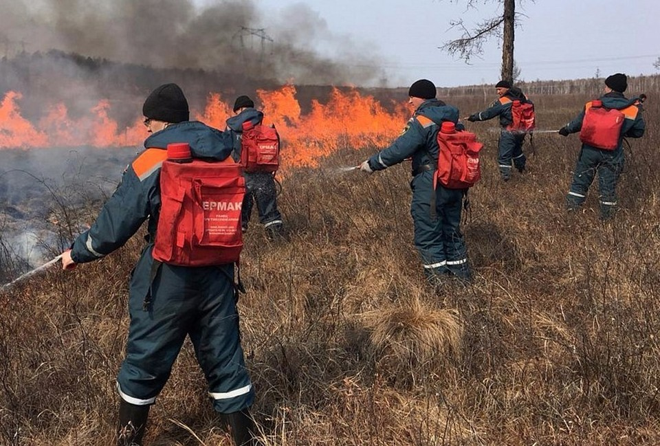 Фото: Коми лесопожарный центр
