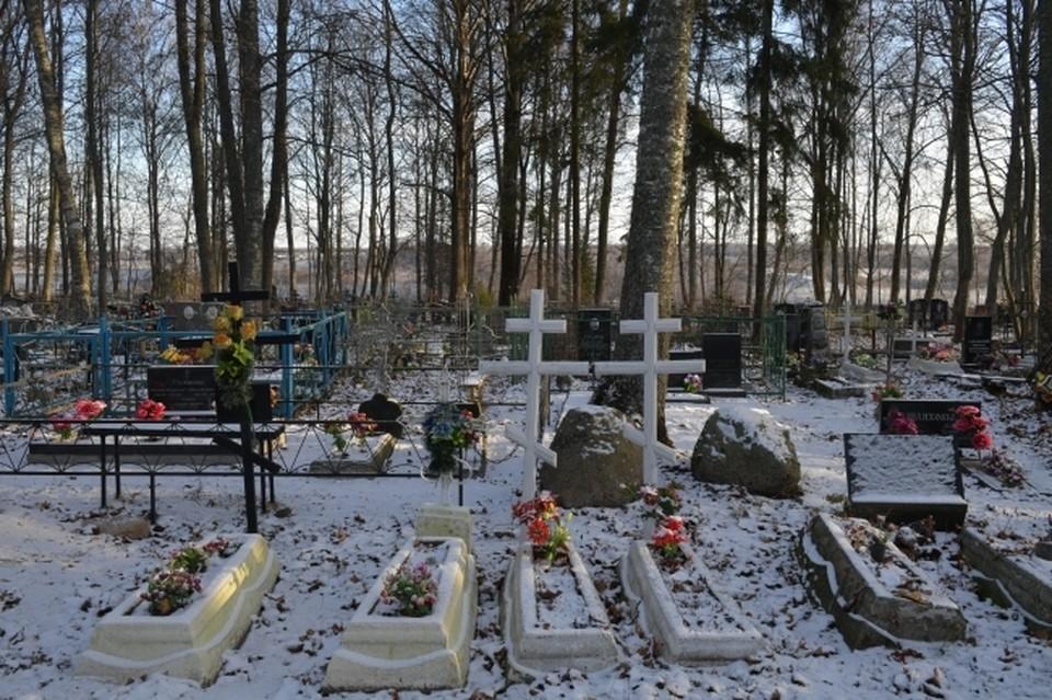 Омичи заметили пропажу оградок вокруг могил, когда приехали с уборкой.