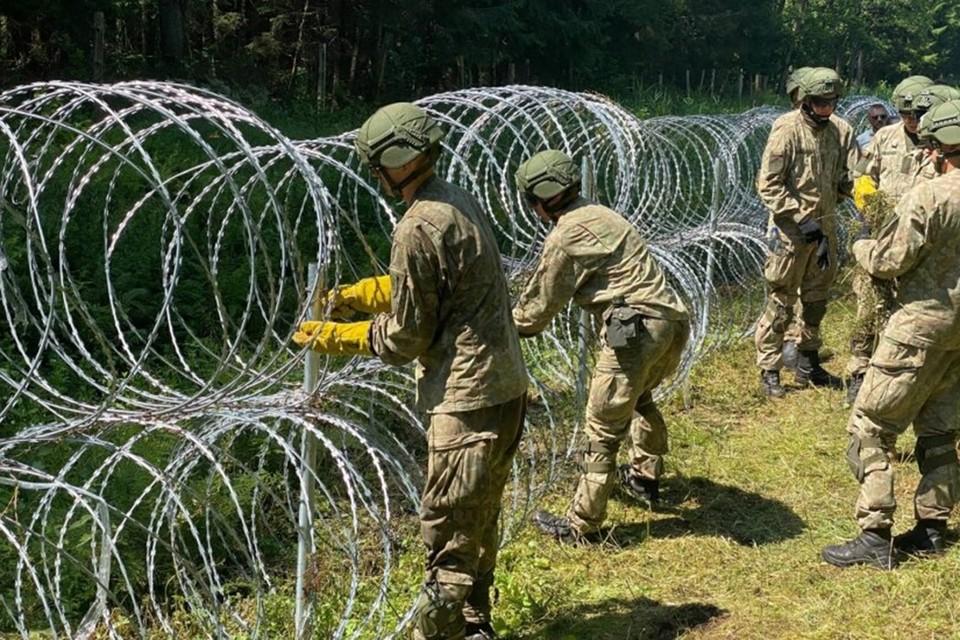 На границе Литвы с Беларусью возводится барьер из колючей проволоки. Фото: DELFI / Andrius Ufartas