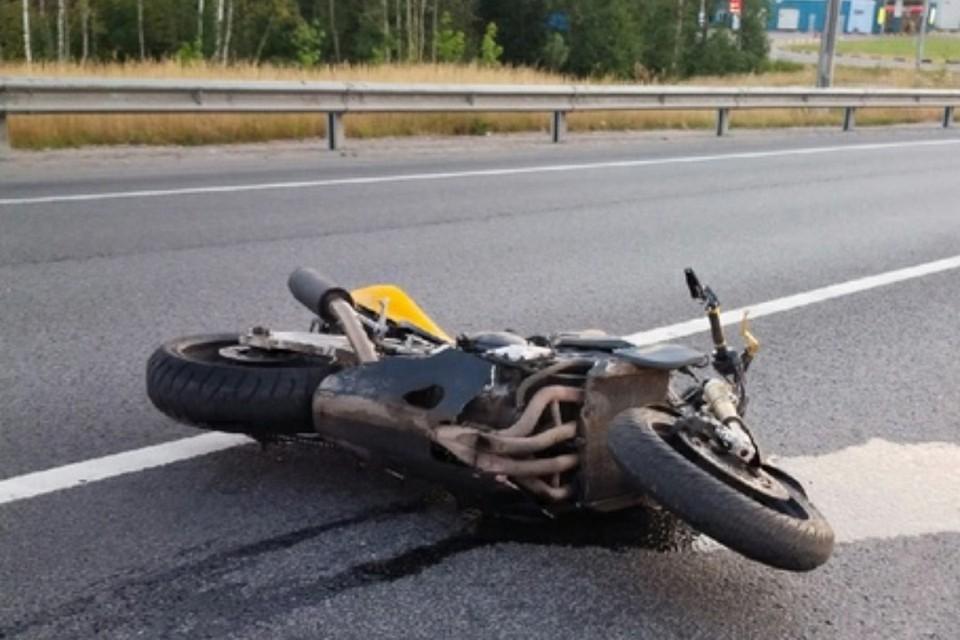 Мотоциклистка погибла ночью в Красном Селе. Фото: vk.com/krasnoe_selo