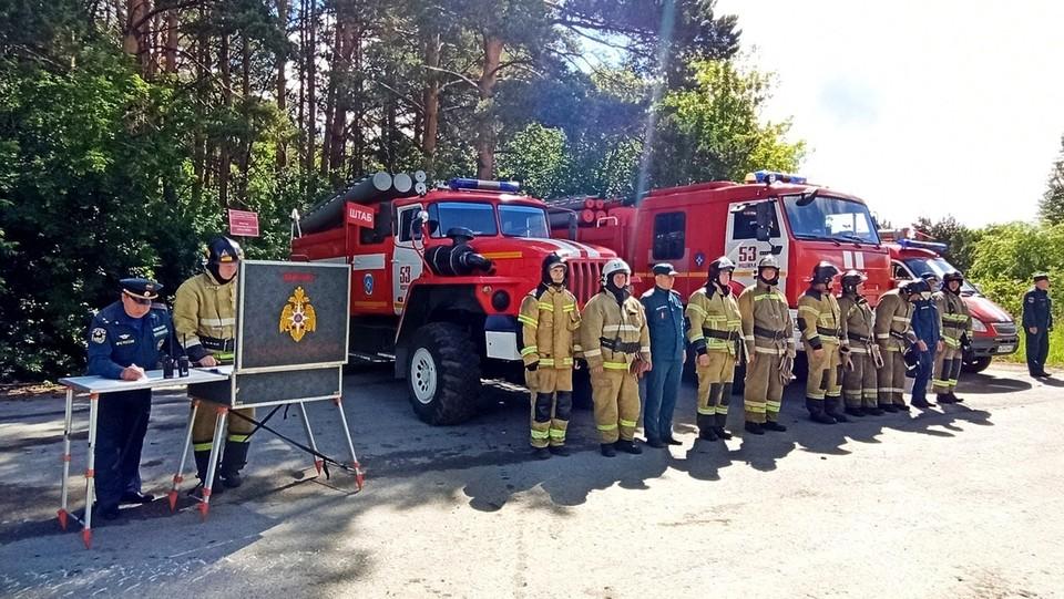 В Тюменской области за сутки потушили пять лесных пожаров на площади почти 300 га.