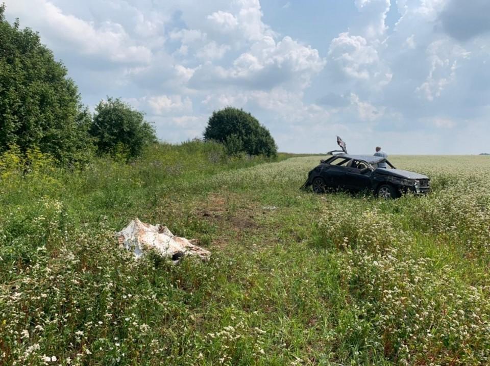 В Тульской области из-за пьяного водителя погибла 15-летняя девушка: возбуждено уголовное дело