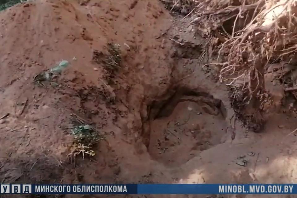 Жителя одной из деревень в Смолевичском районе убили и закопали в лесу. Фото: скриншот видео УВД