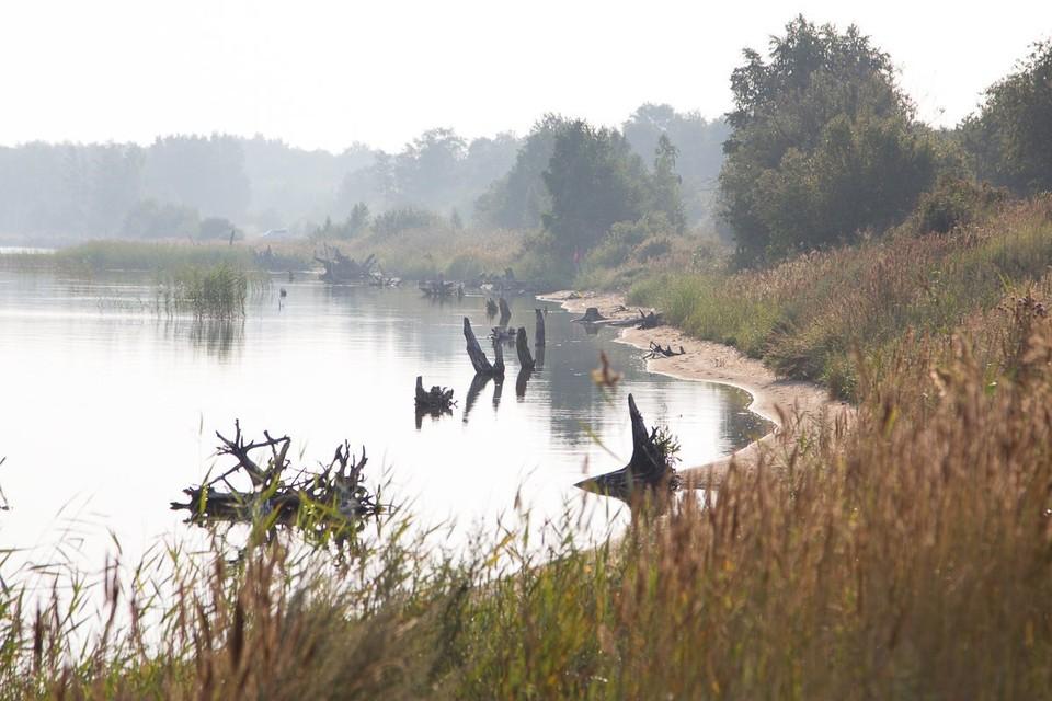 Озеро Большой Куяш, где произошла трагедия. Фото: 74oz.ru