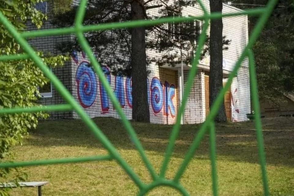 Конфликт произошел между местными жителями и работниками детского лагеря. ФОТО: страница Антона Капралова, ВКонтакте