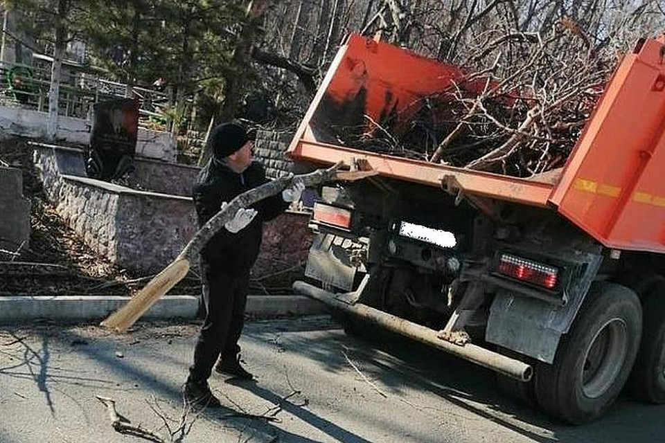 Во Владивостоке пытаются решить проблему с вывозом веток с кладбищ.