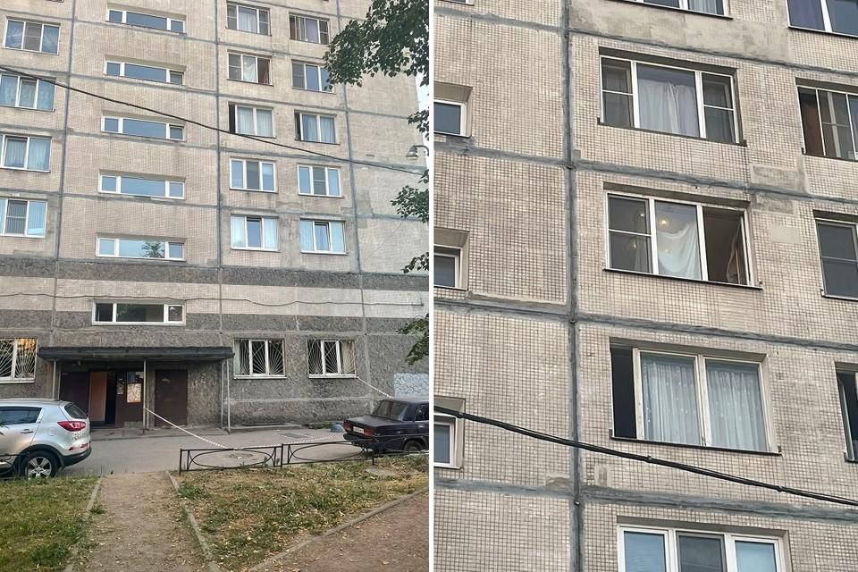 Девочка выпала из окна на Народной улице. Фото: vk.com/spb_today