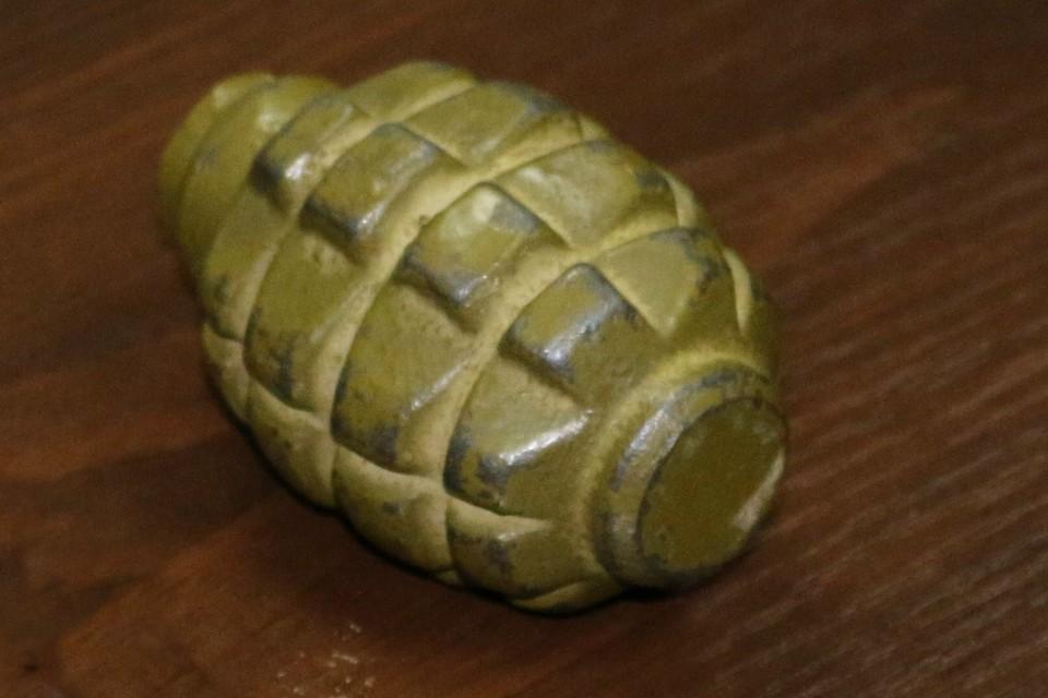 В жилище обнаружили еще одну гранату Ф-1. Фото: МВД ДНР