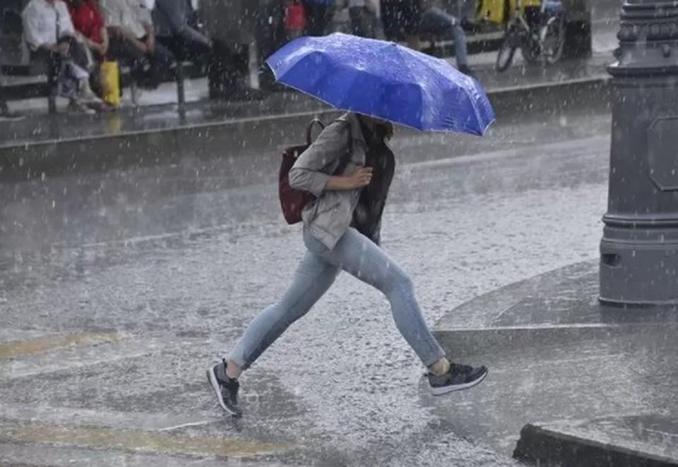 МЧС предупредило о грозе и порывистом ветре в Москве 15 июля 2021