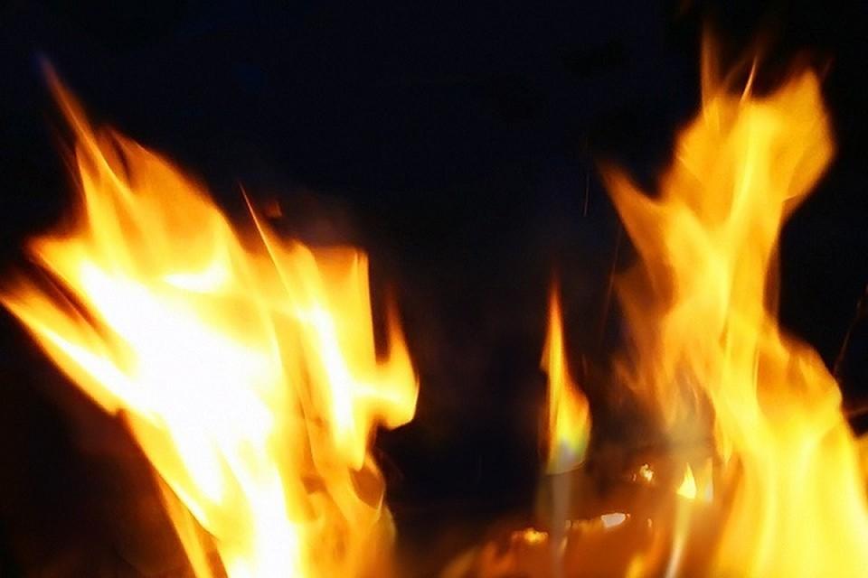 Предварительная причина возникновения пожара - неосторожное обращение с огнем.
