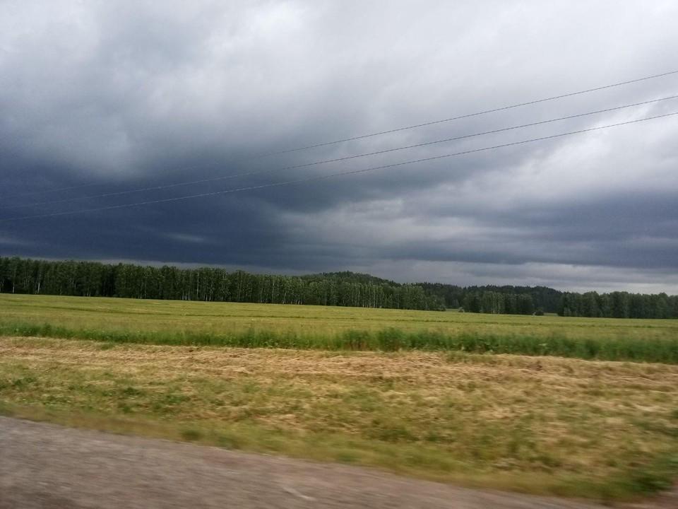В Пермском крае в выходные пройдут дожди и грозы.