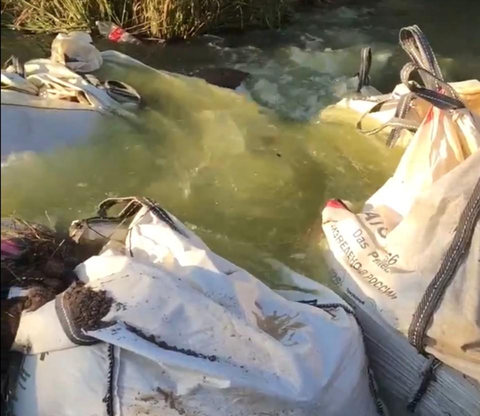 В Тульской области может исчезнуть пруд